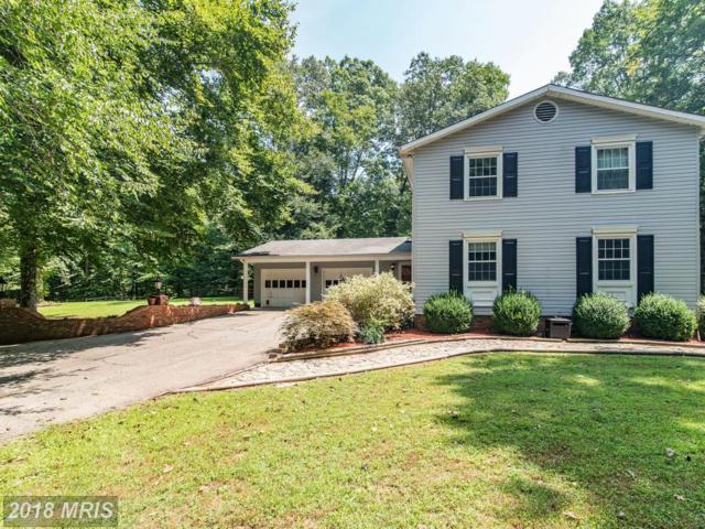 11717 Amkin Drive, Clifton, VA 20124 (#FX10324135) :: Bruce & Tanya and Associates