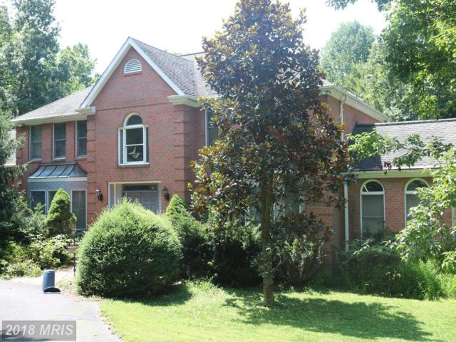 12840 Dunvegan Drive, Clifton, VA 20124 (#FX10324461) :: Browning Homes Group