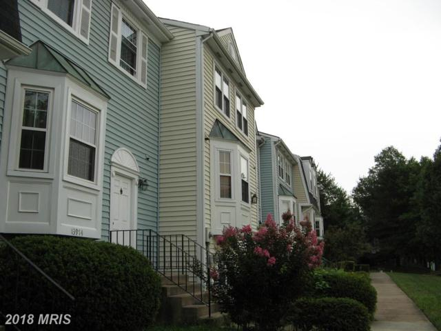 13972 New Braddock Road, Centreville, VA 20121 (#FX10324694) :: Bob Lucido Team of Keller Williams Integrity