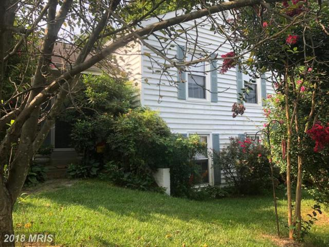 7300 Scarborough Street, Springfield, VA 22153 (#FX10325545) :: Browning Homes Group