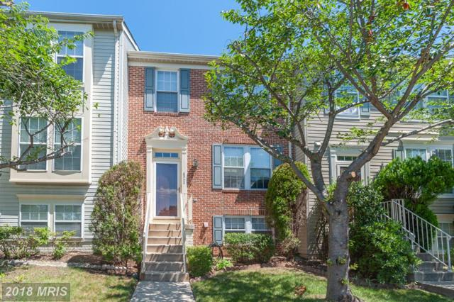 6342 Racetec Place, Springfield, VA 22150 (#FX10325690) :: Browning Homes Group