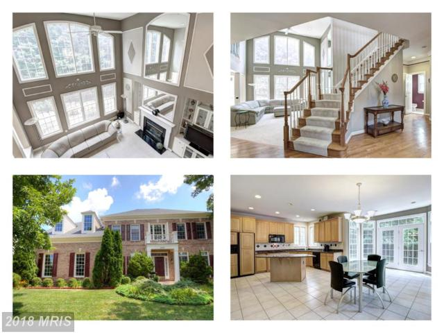 6839 Creek Crest Way, Springfield, VA 22150 (#FX10325714) :: Browning Homes Group