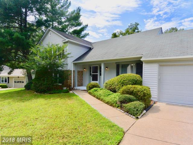 5624 Signal Point Court, Burke, VA 22015 (#FX10326179) :: Browning Homes Group