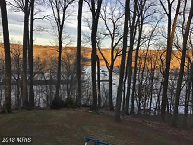 9214 Potomac Ridge Road, Great Falls, VA 22066 (#FX10326733) :: Browning Homes Group