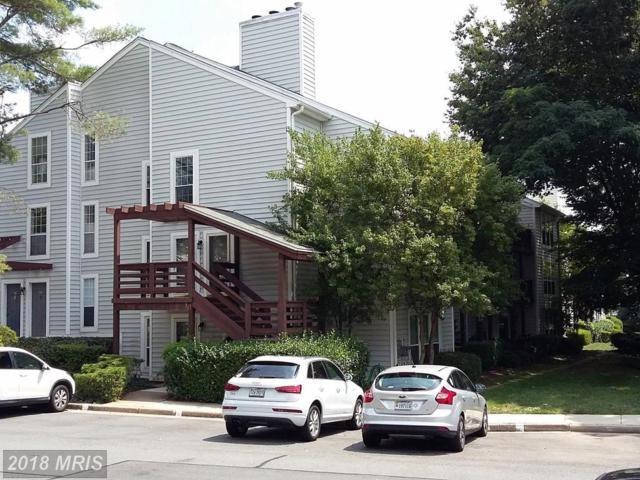 10055 Oakton Terrace Road #10055, Oakton, VA 22124 (#FX10333536) :: Keller Williams Pat Hiban Real Estate Group