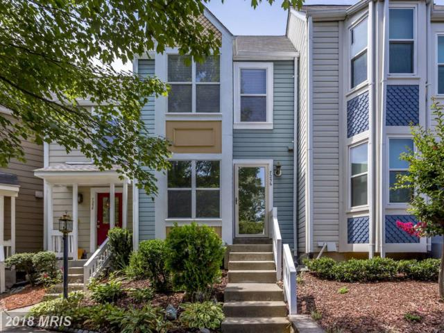 7256 Liverpool Court, Alexandria, VA 22315 (#FX10338967) :: Tom & Cindy and Associates