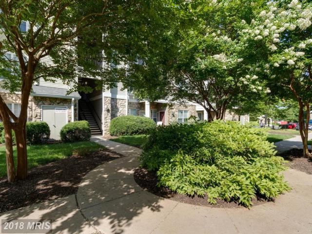 13397-E Connor Drive E, Centreville, VA 20120 (#FX10340318) :: The Greg Wells Team
