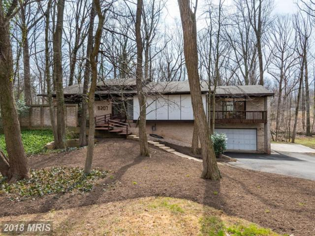 8207 Woodland Avenue, Annandale, VA 22003 (#FX10340424) :: Keller Williams Pat Hiban Real Estate Group