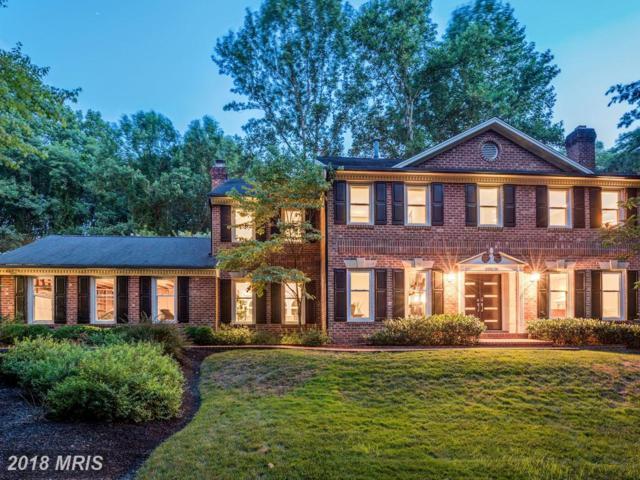10128 Wendover Drive, Vienna, VA 22181 (#FX10340639) :: Colgan Real Estate