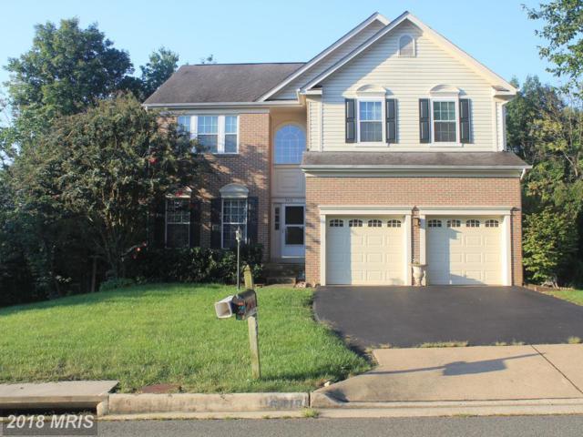 6410 Emerald Green Court, Centreville, VA 20121 (#FX10343196) :: RE/MAX Gateway