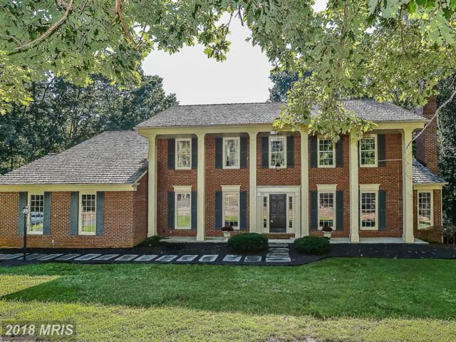 11125 Henderson Road, Fairfax Station, VA 22039 (#FX10343371) :: Browning Homes Group