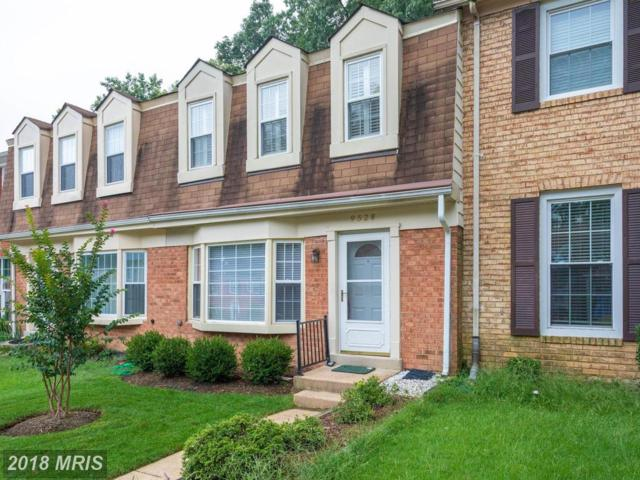 9528 Cherry Oak Court, Burke, VA 22015 (#FX10343898) :: Circadian Realty Group