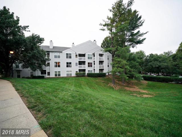 10300 Appalachian Circle #103, Oakton, VA 22124 (#FX10344264) :: RE/MAX Executives