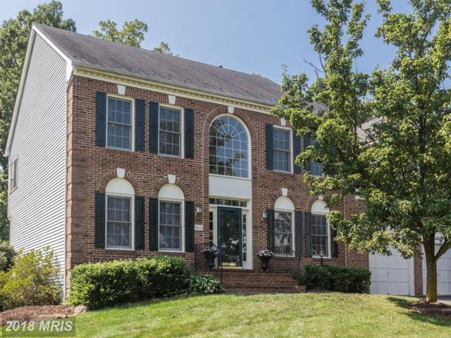 5610 Willow Crossing Court, Clifton, VA 20124 (#FX10345342) :: Berkshire Hathaway HomeServices