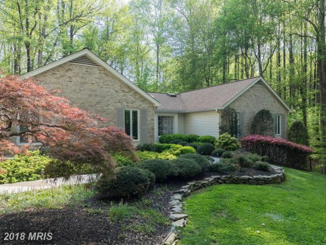 6326 Youngs Branch Drive, Fairfax Station, VA 22039 (#FX10345996) :: RE/MAX Executives