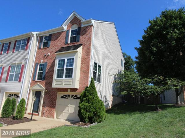 5247 Ballycastle Circle, Alexandria, VA 22315 (#FX10346237) :: AJ Team Realty