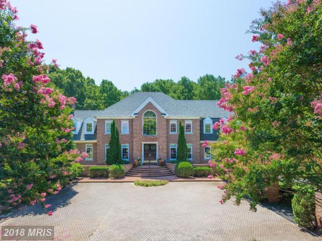 11617 Rolling Meadow Drive, Great Falls, VA 22066 (#FX10346921) :: Berkshire Hathaway HomeServices