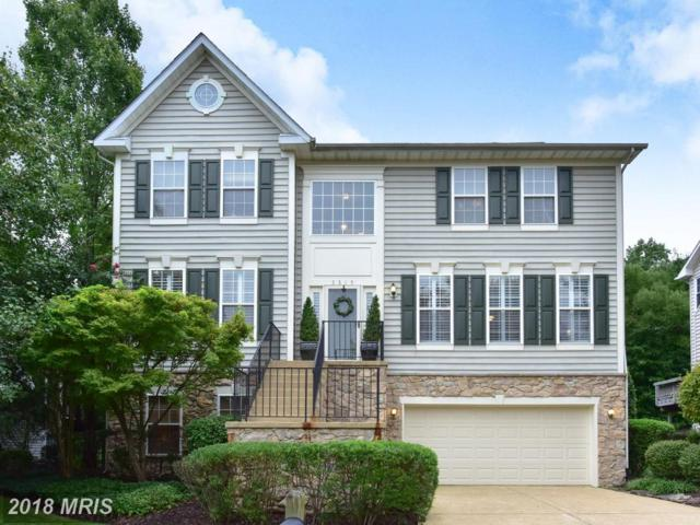 5319 Trumpington Court, Alexandria, VA 22315 (#FX10347376) :: Tom & Cindy and Associates
