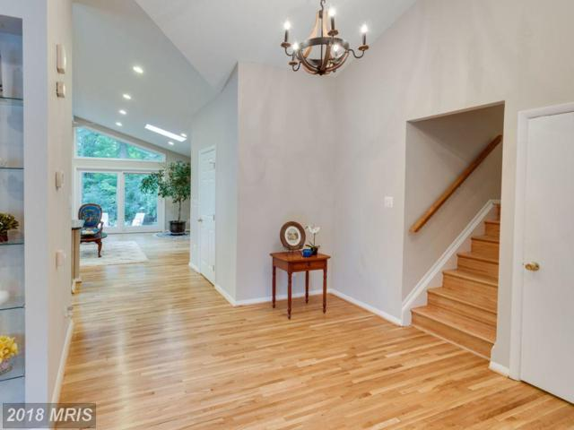 4709 Guinea Road, Annandale, VA 22003 (#FX10347632) :: Fine Nest Realty Group