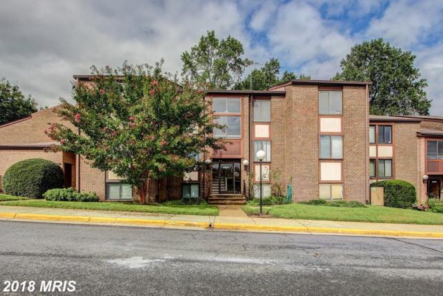 9804 Kingsbridge Drive #201, Fairfax, VA 22031 (#FX10349780) :: The Greg Wells Team