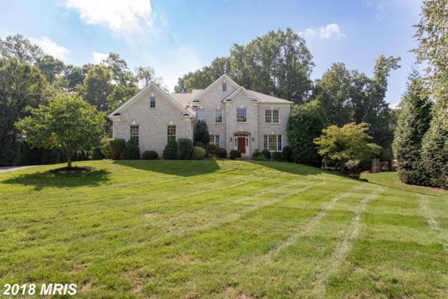 9601 Symphony Meadow Lane, Vienna, VA 22182 (#FX10350384) :: Bic DeCaro & Associates
