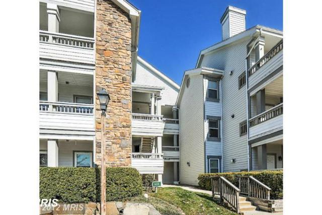 4405 Fair Stone Drive #104, Fairfax, VA 22033 (#FX10351583) :: Bic DeCaro & Associates