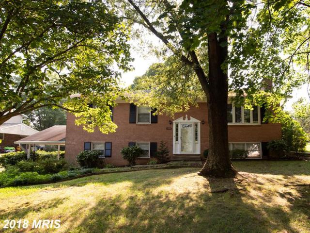 5105 Redwing Drive, Alexandria, VA 22312 (#FX10351665) :: Zadareky Group/Keller Williams Realty Metro Center