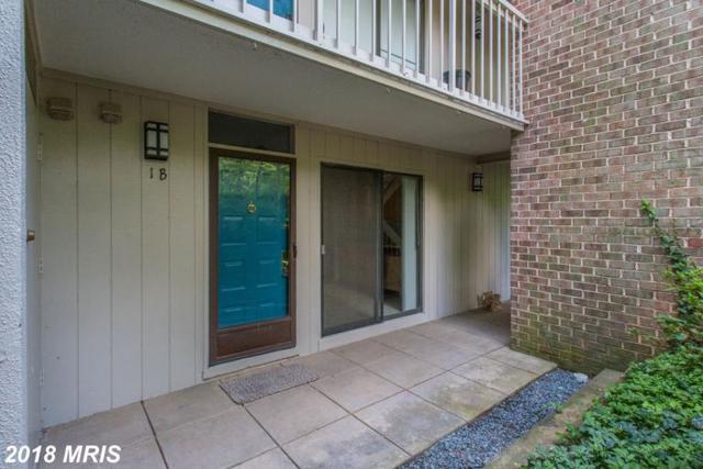 1528 Moorings Drive 1B, Reston, VA 20190 (#FX10352558) :: Bic DeCaro & Associates