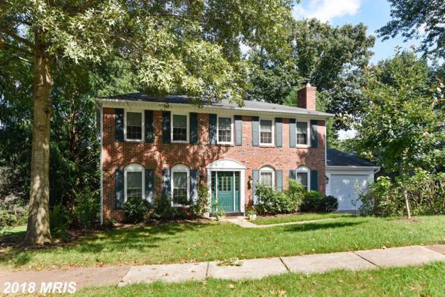 9616 Verdict Drive, Vienna, VA 22181 (#FX10352636) :: Labrador Real Estate Team