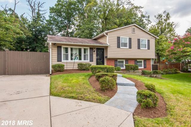 5729 Overly Drive, Alexandria, VA 22310 (#FX10352793) :: Zadareky Group/Keller Williams Realty Metro Center