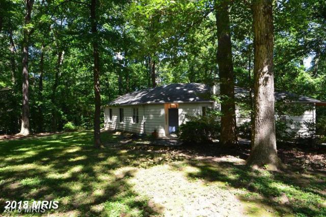 7311 Oriole Avenue, Springfield, VA 22150 (#FX10353217) :: Colgan Real Estate