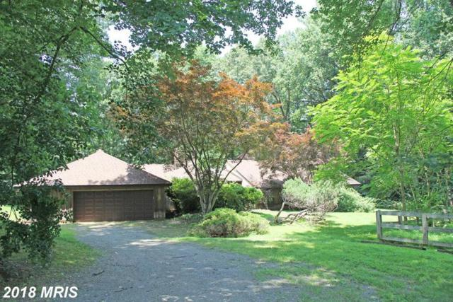 641 Mine Ridge Road, Great Falls, VA 22066 (#FX10353664) :: Circadian Realty Group