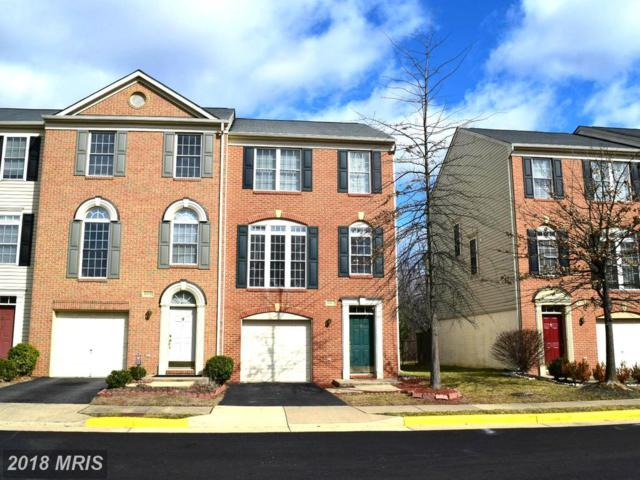 5317 Rosemallow Circle, Centreville, VA 20120 (#FX9012048) :: Bob Lucido Team of Keller Williams Integrity