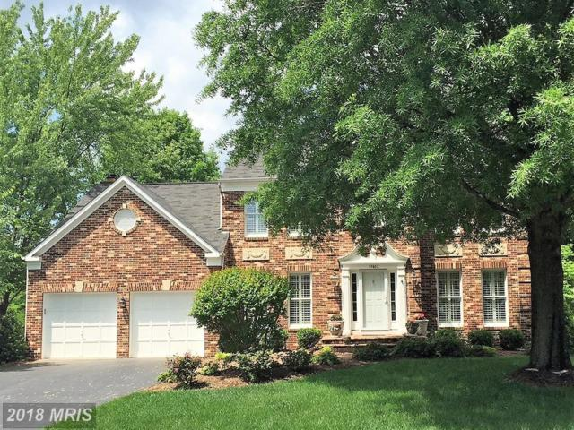13602 White Stone Court, Clifton, VA 20124 (#FX9012190) :: Browning Homes Group