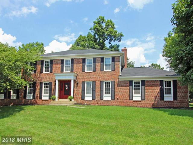 13726 Springstone Drive, Clifton, VA 20124 (#FX9012317) :: Browning Homes Group