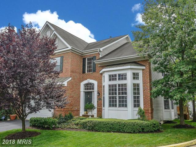 6473 Warwick Circle, Alexandria, VA 22315 (#FX9012395) :: Browning Homes Group