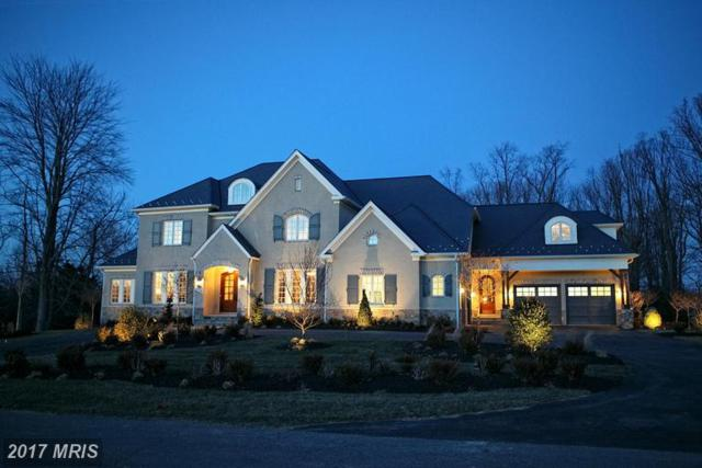 11324 Fox Creek Farm Way, Great Falls, VA 22066 (#FX9828148) :: LoCoMusings