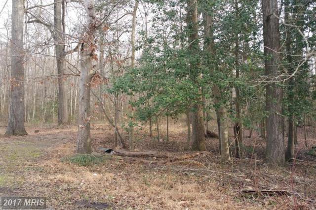 Delphinium Trail, Lorton, VA 22079 (#FX9854892) :: Pearson Smith Realty