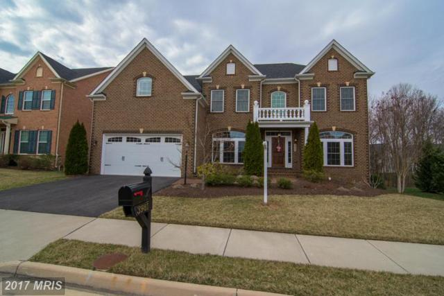 3981 Woodberry Meadow Drive, Fairfax, VA 22033 (#FX9881434) :: LoCoMusings