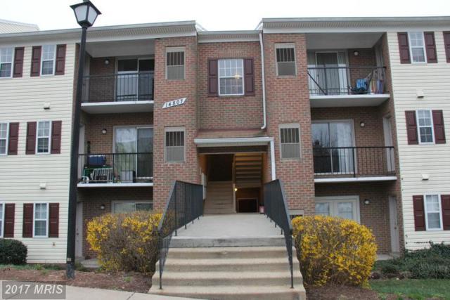14807 Rydell Road #301, Centreville, VA 20121 (#FX9890169) :: LoCoMusings