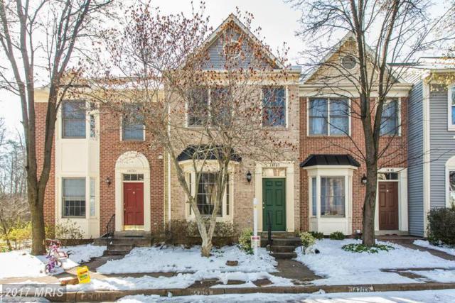 14703 Bonnet Terrace, Centreville, VA 20121 (#FX9892552) :: LoCoMusings