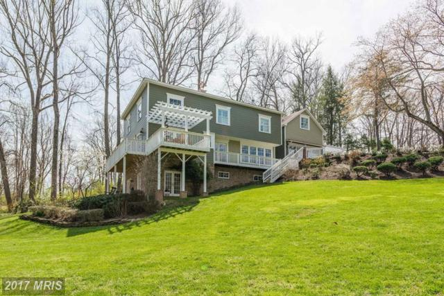 10100 Captain Hickory Place, Great Falls, VA 22066 (#FX9908763) :: LoCoMusings