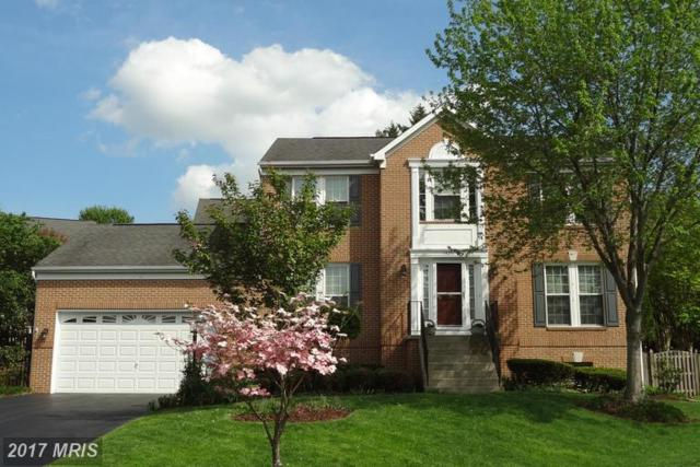 14351 Maple Rock Court, Centreville, VA 20121 (#FX9932306) :: LoCoMusings