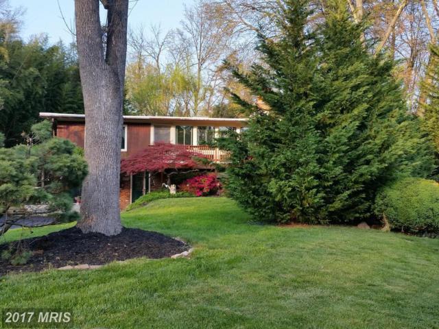 2909 Pine Spring Road, Falls Church, VA 22042 (#FX9936412) :: Pearson Smith Realty