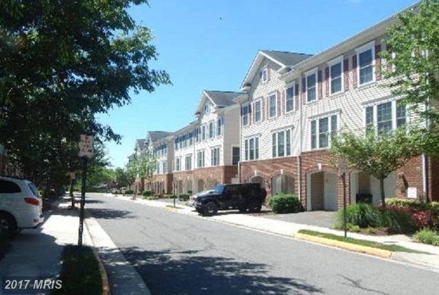 7112 Mason Grove Court #29, Alexandria, VA 22306 (#FX9938557) :: LoCoMusings