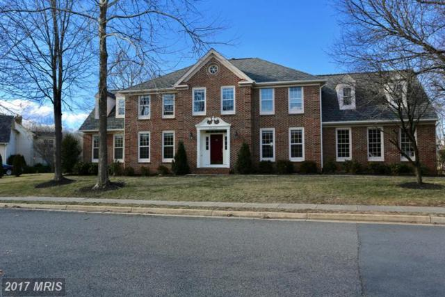 15443 Eagle Tavern Lane, Centreville, VA 20120 (#FX9940112) :: LoCoMusings
