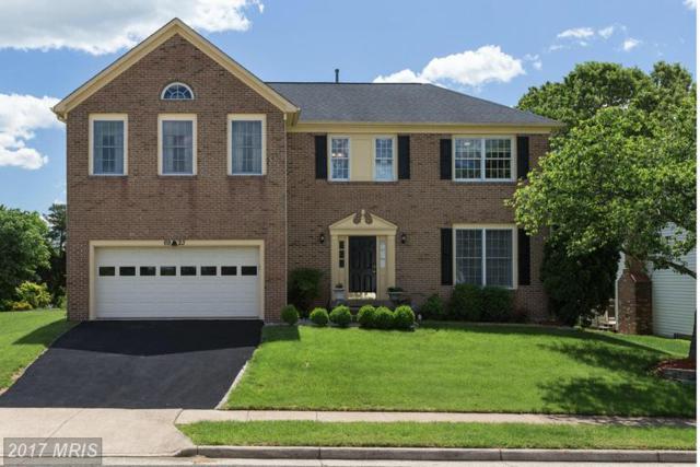 6923 Confederate Ridge Lane, Centreville, VA 20121 (#FX9941036) :: LoCoMusings