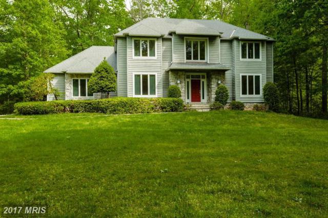 974 Millwood Lane S, Great Falls, VA 22066 (#FX9942634) :: LoCoMusings