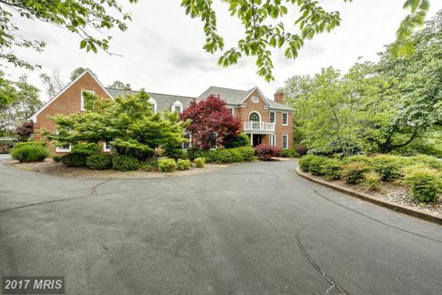 5781 Robeys Meadow Lane, Fairfax, VA 22030 (#FX9944901) :: LoCoMusings