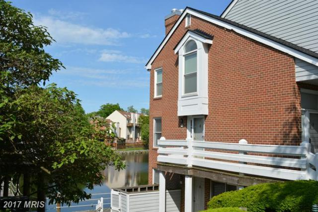 7604-F Lakeside Village Drive F, Falls Church, VA 22042 (#FX9945553) :: LoCoMusings
